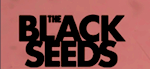 "The Black Seeds: ""What you give, it's coming back to you"""